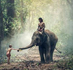 Birmanie8