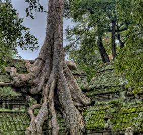 Laos-Cambodge_angkor