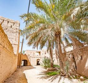 Oman_Niswa