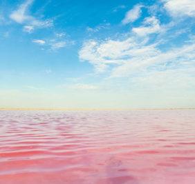 Senegal_lac-rose