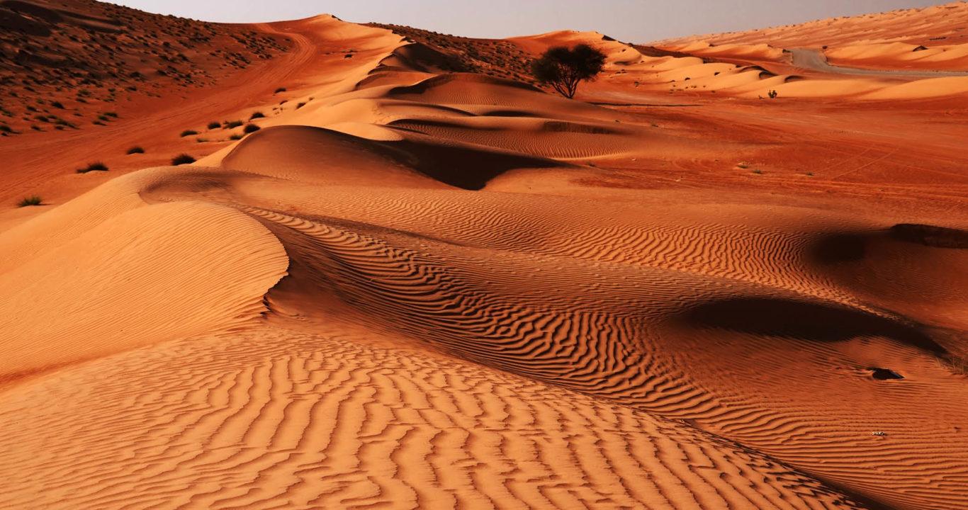 Emirats et Oman 2020
